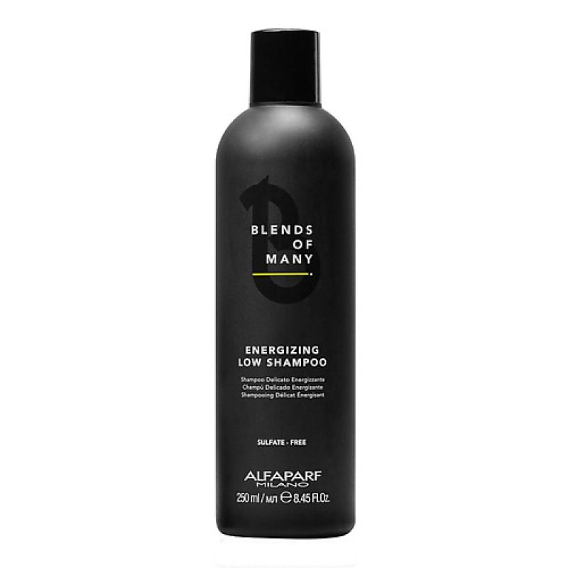 Шампунь для волос энергетический Blends of many Alfaparf